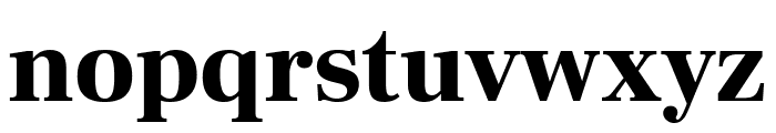 Frank Ruhl Libre Black Font LOWERCASE