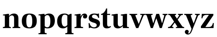 Frank Ruhl Libre Bold Font LOWERCASE
