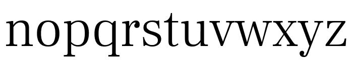 Frank Ruhl Libre Light Font LOWERCASE