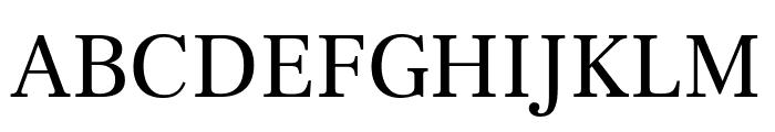 Frank Ruhl Libre Regular Font UPPERCASE
