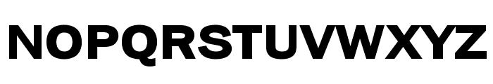 Frankston Bold Font UPPERCASE