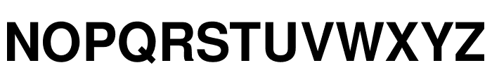 Free Sans Bold Font UPPERCASE
