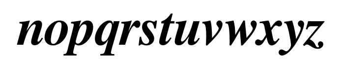 Free Serif Bold Italic Font LOWERCASE