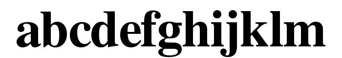 Free Serif Bold Font LOWERCASE