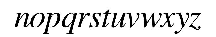 Free Serif Italic Font LOWERCASE