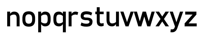 Freeroad Regular Font LOWERCASE