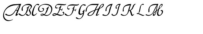 Fridha Regular Font UPPERCASE