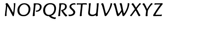 Fritz Book Italic Font UPPERCASE