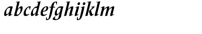 Frutiger Serif Condensed Bold Italic Font LOWERCASE