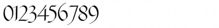 Fraktur No3 Pro Font OTHER CHARS