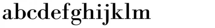 Frank Ruhl MF Italic Font LOWERCASE
