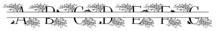 Fratello Nick Split Monogram Due Font UPPERCASE