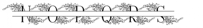 Fratello Nick Split Monogram Due Font LOWERCASE