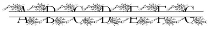 Fratello Nick Split Monogram Font UPPERCASE