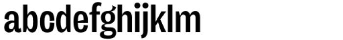 Freigeist XCon Medium Font LOWERCASE