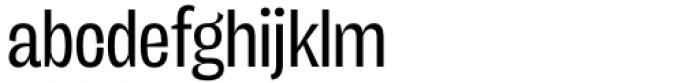 Freigeist XCon Regular Font LOWERCASE