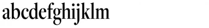 Freight Display Cmp Pro Medium Font LOWERCASE