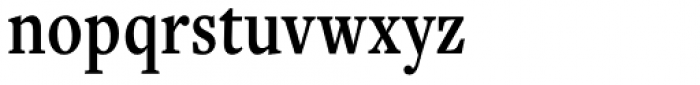Freight Text Cmp Pro Semibold Font LOWERCASE