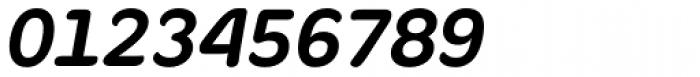 Fruitygreen Pro Bold Italic Font OTHER CHARS