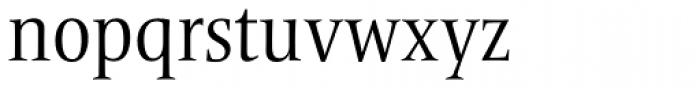 Frutiger Serif Pro Condensed  Font LOWERCASE