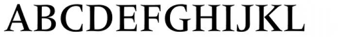 Frutiger Serif Pro Medium Font UPPERCASE