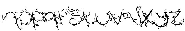FTF Indonesiana Island Font LOWERCASE