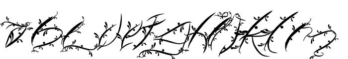 FTF Leafy Lopstonesia Font LOWERCASE