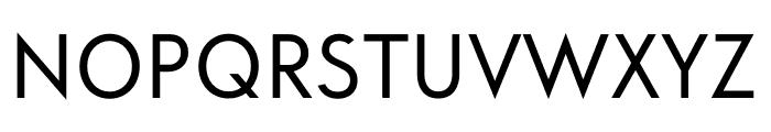 ft anima Regular Font UPPERCASE