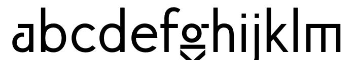 ft anima Regular Font LOWERCASE