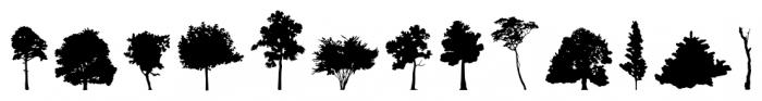 FT Hidden Forest Regular Font UPPERCASE