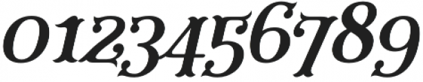 Furius Title Italic otf (400) Font OTHER CHARS