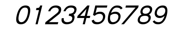 Fudd Italic Font OTHER CHARS