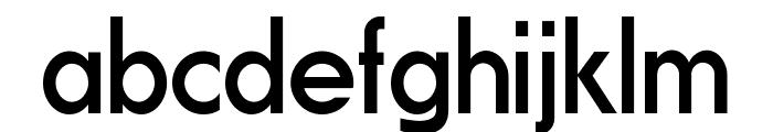 Fundamental  Brigade Regular Font LOWERCASE