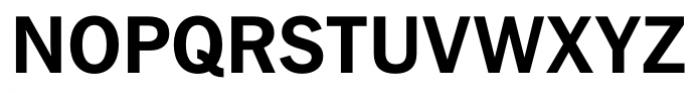 FullerSansDT Bold Font UPPERCASE