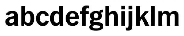FullerSansDT Bold Font LOWERCASE