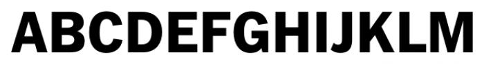 FullerSansDT ExtraBold Font UPPERCASE