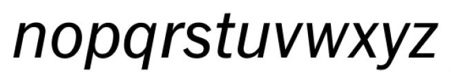 FullerSansDT Italic Font LOWERCASE
