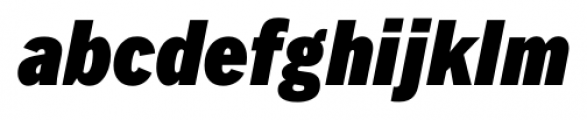 FullerSansDTCond Black Italic Font LOWERCASE