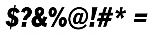 FullerSansDTCond Extra Bold Italic Font OTHER CHARS