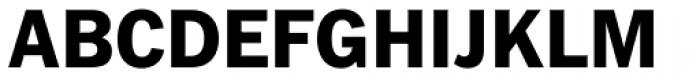 Fuller Sans DT ExtraBold Font UPPERCASE