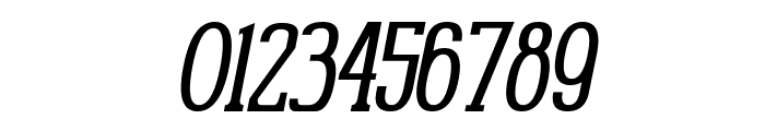 Gabriel Serif Condensed Italic Font OTHER CHARS