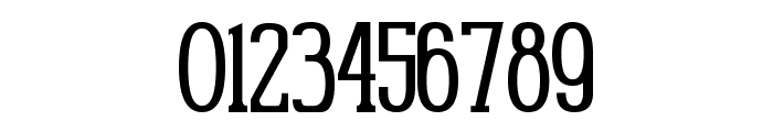 Gabriel Serif Condensed Font OTHER CHARS