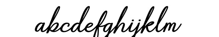 Gabryna Font LOWERCASE