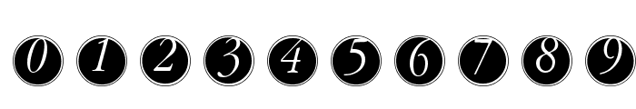 GaraNitialsFramed Font OTHER CHARS
