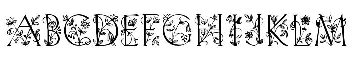 GardenDisplayCaps Font LOWERCASE
