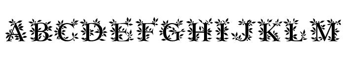 Gayane StO Regular Font UPPERCASE
