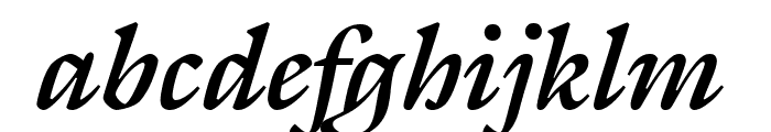 Gallery Bold Italic Font LOWERCASE