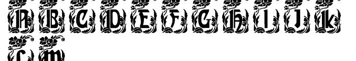 Gans Gotico Globo Decorative Font UPPERCASE