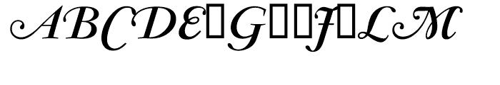 Garamond Bold Italic Swash Ludlow Font