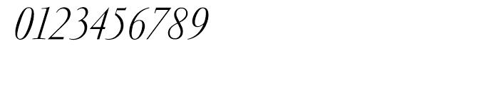 Garamond Light Italic Ludlow Font OTHER CHARS